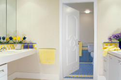 Металлопластиковая дверь для ванной